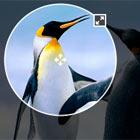 ngImgCrop : Image Crop directive for AngularJs | AngularJs Plugin